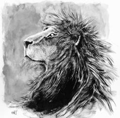 lionfin